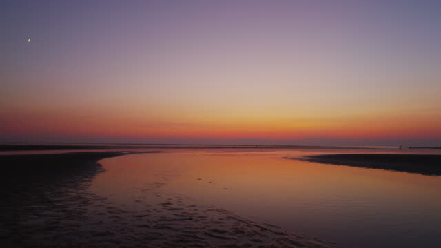 sunset over the tidal flats of wellfleet cape cod - horizon over water stock videos & royalty-free footage