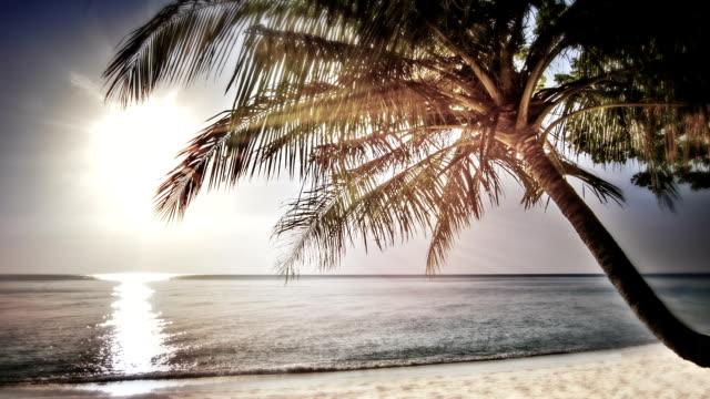 Sonnenuntergang über den tropischen Strand.