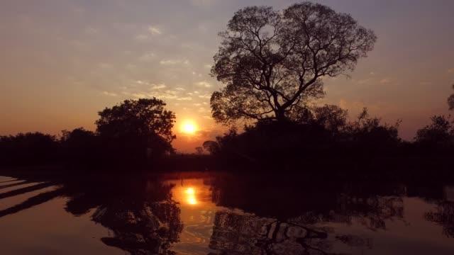 vídeos de stock, filmes e b-roll de pôr do sol sobre a água - hungria