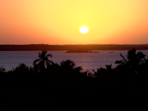 stockvideo's en b-roll-footage met ws,  sunset oversea coastline,  harbour island,  bahamas - waaierpalm