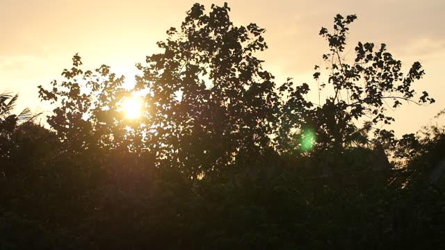 sunset / pererenana, bali, indonesia - nostalgia stock videos & royalty-free footage
