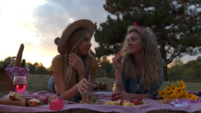 sunset picnic - natural parkland stock videos & royalty-free footage