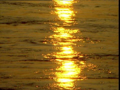 sunset reflects on water, gulf of mexico - gulf of mexico stock videos and b-roll footage