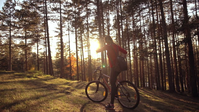 vídeos de stock, filmes e b-roll de pôr do sol passeios - mountain bike ciclismo
