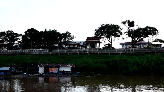 vídeos de stock e filmes b-roll de pôr do sol rio - rebento de bambu
