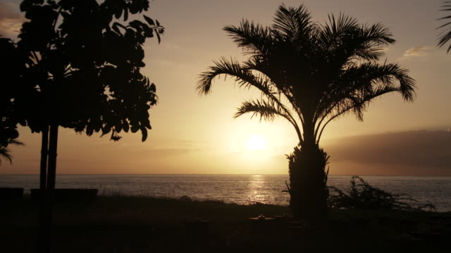 vidéos et rushes de sunset silhouette and ocean in reunion island - french overseas territory