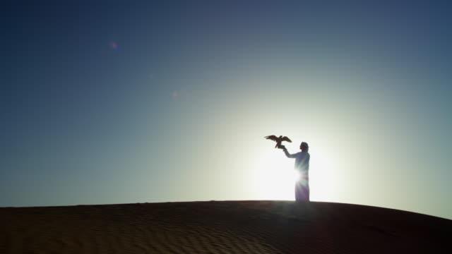 sunset silhouette arabic man with bird of prey - headdress stock videos & royalty-free footage