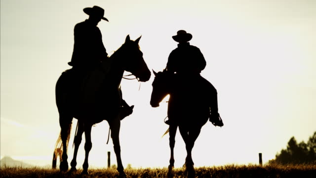 sunset silhouette of cowboys in forest wilderness canada - cowboy stock videos & royalty-free footage