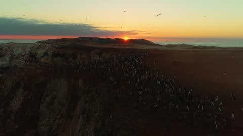 sunset sky over coastal cliff / punta san juan, peru, south america - coastal feature stock videos & royalty-free footage
