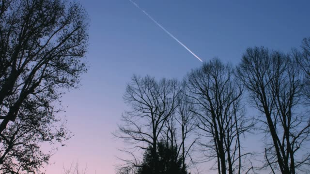 Sunset Sky With Plane