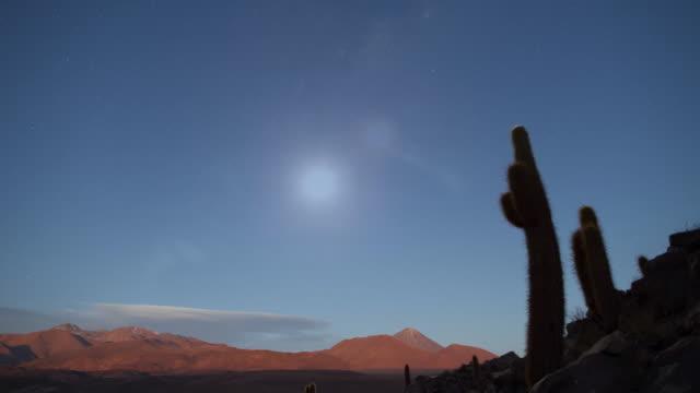 sunset, starry night, moonrise (fast loop) - cactus stock videos & royalty-free footage