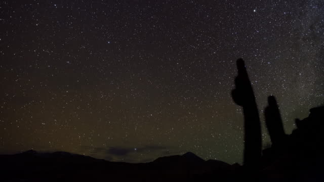 sunset, starry night, moonrise - cactus stock videos & royalty-free footage