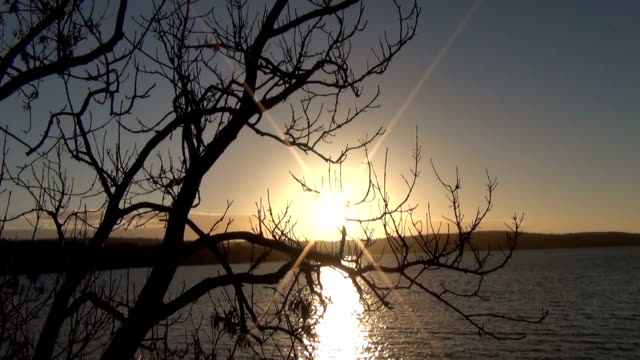 sunset / sunrise on the river. - radio controlled handset stock videos and b-roll footage