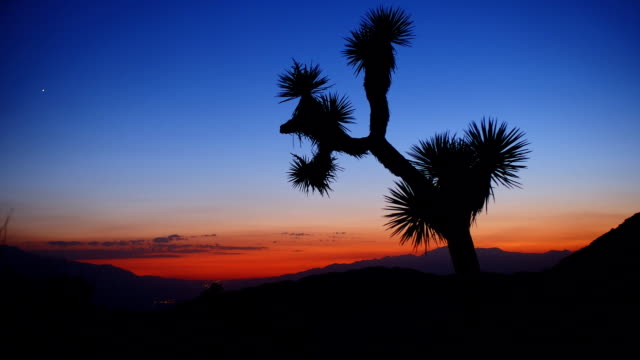 Sonnenuntergang Zeitraffer in Joshua Tree National Park