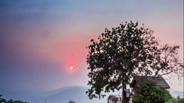 vídeos de stock, filmes e b-roll de ao pôr do sol hora (intervalo de tempo) - treehouse