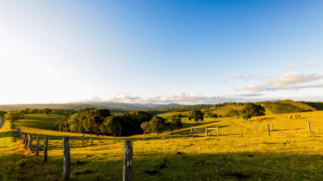 sunset timelapse at hinterland of byron bay, new south wales, australia - horizon over land stock videos & royalty-free footage