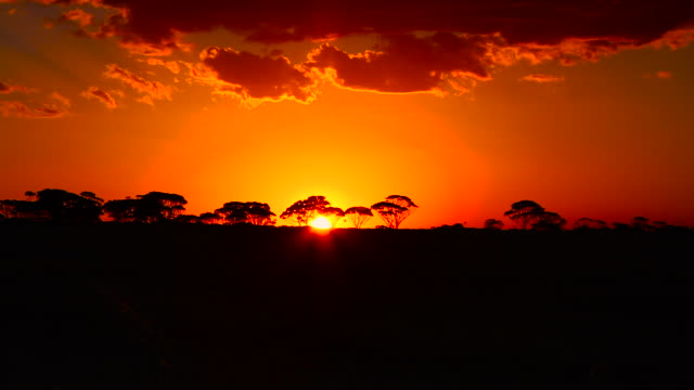 sunset time-lapse western australia - outback stock videos & royalty-free footage