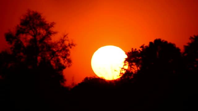 vidéos et rushes de coucher de soleil - oahu