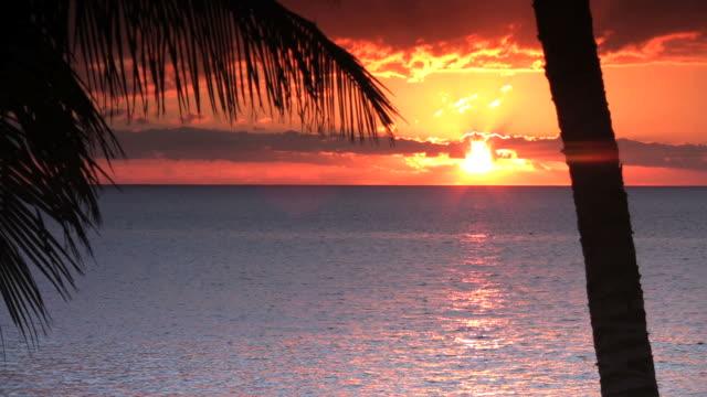 vídeos de stock, filmes e b-roll de pôr-do-sol - céu romântico