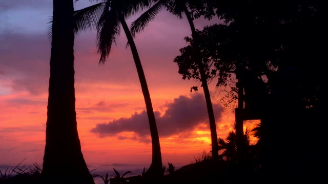 sunset - costa rica stock videos & royalty-free footage