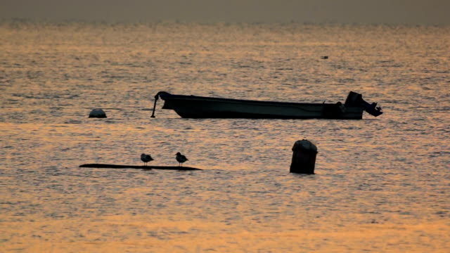 Sunset view of anchored narrow boat and seagulls at Dadaepo Beach (popular tourist attractions)