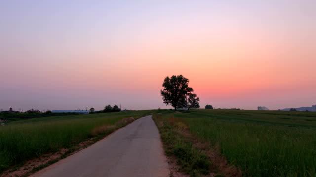 vídeos y material grabado en eventos de stock de sunset view of lonely tree at anseong farmland (famous farm in korea) - carretera vacía