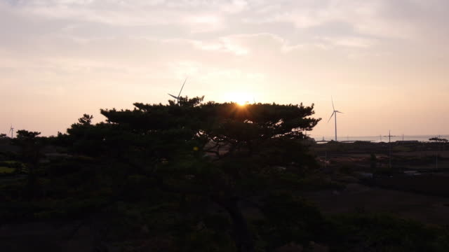 Sunset view of many wind turbines at coastal feature