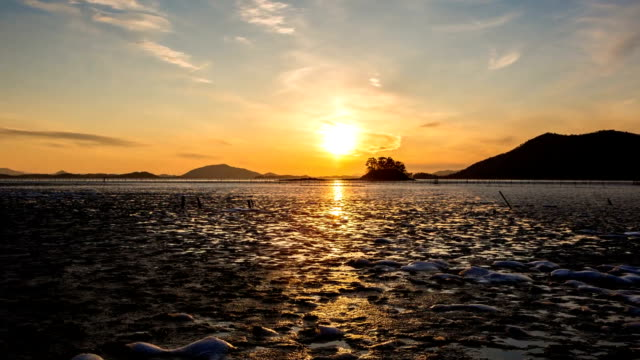sunset view of mud flat at waon beach in suncheonman bay(natural landmark,ecological park) - natural landmark stock videos & royalty-free footage