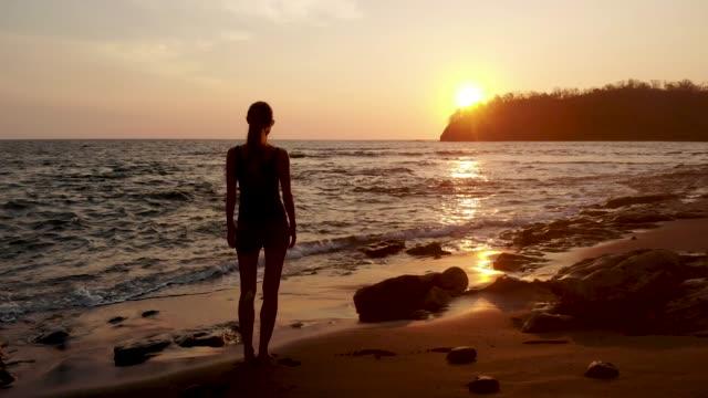 utsikt över solnedgången - tropiskt träd bildbanksvideor och videomaterial från bakom kulisserna