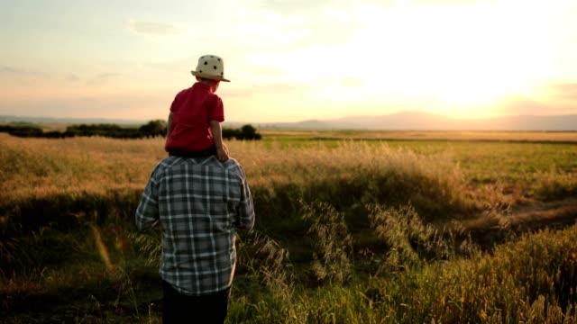 sunset walks - grandfather stock videos & royalty-free footage