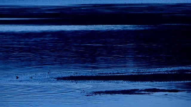 vídeos de stock e filmes b-roll de sunset water ripples on the beach in krabi province, thailand - mar de andamão