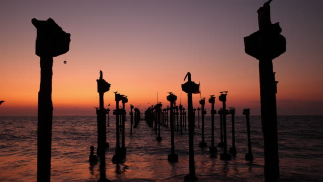 sunset with bridge construction remnants, alleppey beach - backwater stock videos & royalty-free footage