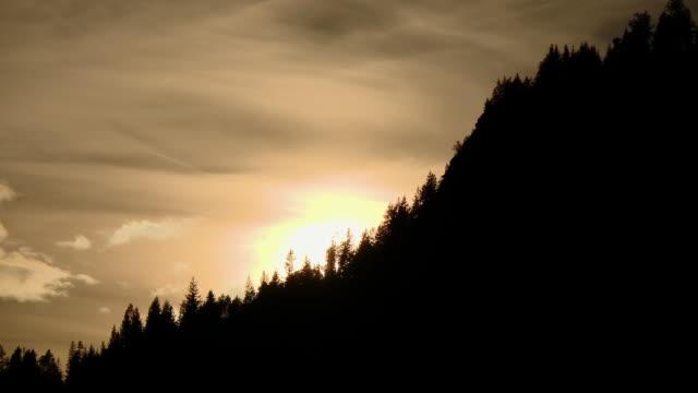 vídeos de stock e filmes b-roll de a sunset with trees in the forest in backlit - 50 segundos ou mais