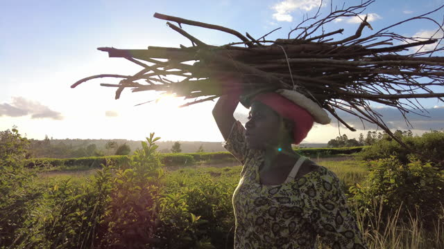 sunset young african woman carrying a bundle of firewood on her head - carrying stock videos & royalty-free footage