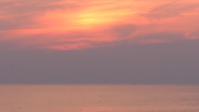 sunset zoom out to beach - オオハマガヤ属点の映像素材/bロール