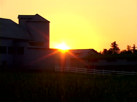 sunsets, barns and pasture - anna maria island stock videos and b-roll footage