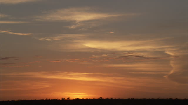 sunsets on the horizon in the australian outback - horizont über land stock-videos und b-roll-filmmaterial
