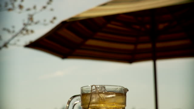 cu td sunshade and cold iced tea in glass pitcher / brooklyn, new york - beccuccio video stock e b–roll