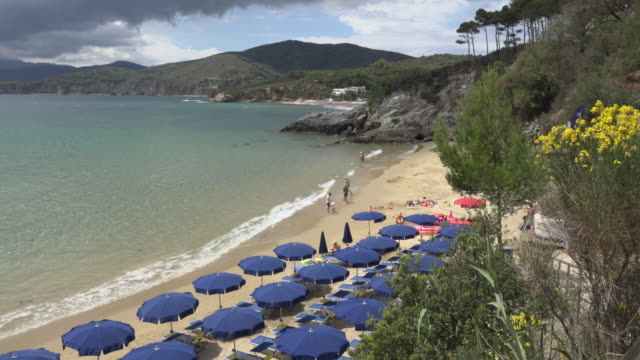 sunshades at calanchiole beach in the gulf of stella - island of elba stock videos & royalty-free footage