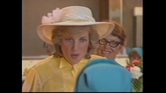stockvideo's en b-roll-footage met car pulls up / yandina ext buderim ginger growers coop factory building / prince charles and princess diana meet and greet with crowds / int factory... - 1983