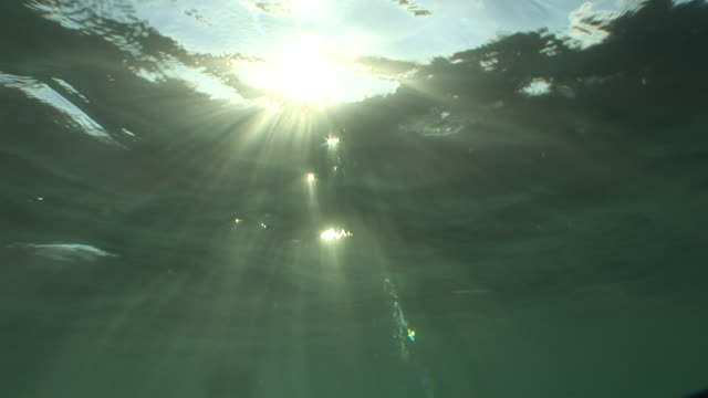 stockvideo's en b-roll-footage met sunshine filtering through active movement surface water into blue water - zonnestraal
