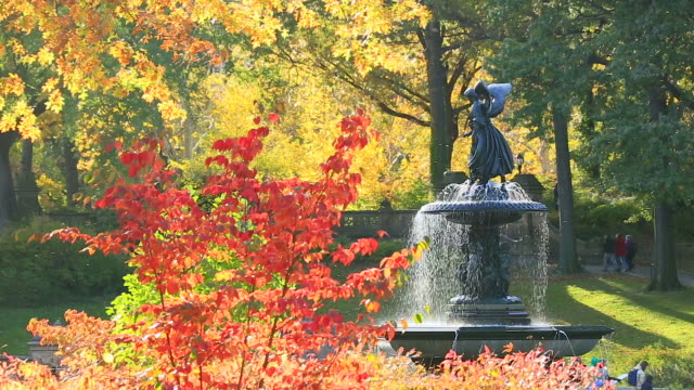 vídeos y material grabado en eventos de stock de sunshine illuminates the autumn color leaves and fountain at central park. - figura femenina