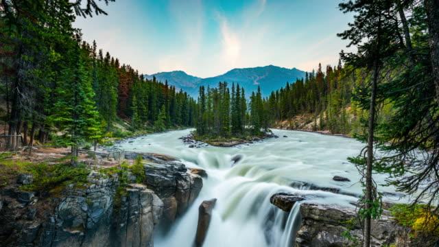 sunwapta falls in jasper national park, alberta, canada - time lapse - athabasca falls stock videos & royalty-free footage