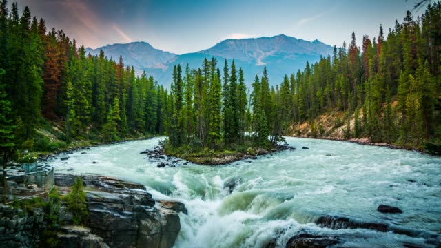 sunwapta falls - jasper national park, canada - stream stock videos & royalty-free footage