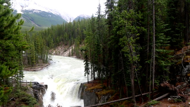 Sunwapta Falls Jasper National Park