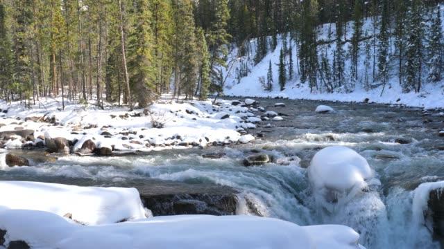 sunwapta falls water fall in canada jasper national park alberta canada - flowing water stock videos & royalty-free footage