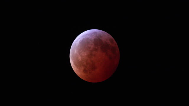 super blood wolf moon total lunar eclipse january 21 2019 in bloomington indiana - supermoon stock videos & royalty-free footage