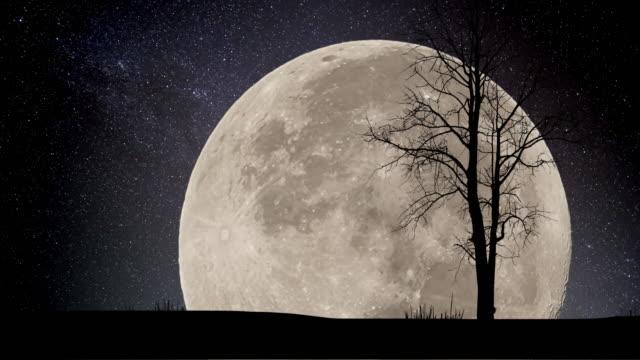 vídeos de stock, filmes e b-roll de super lua noite estrelas lapso de tempo - chuva de meteoros