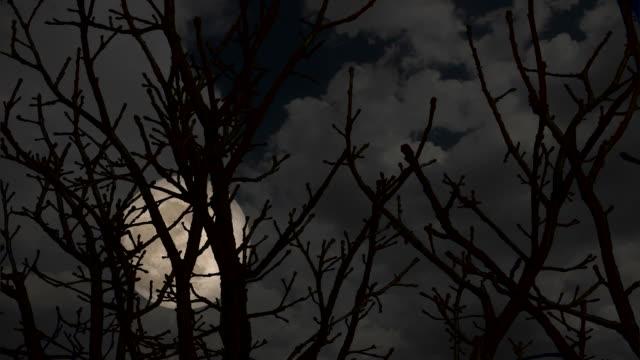 HD Super Moon Night
