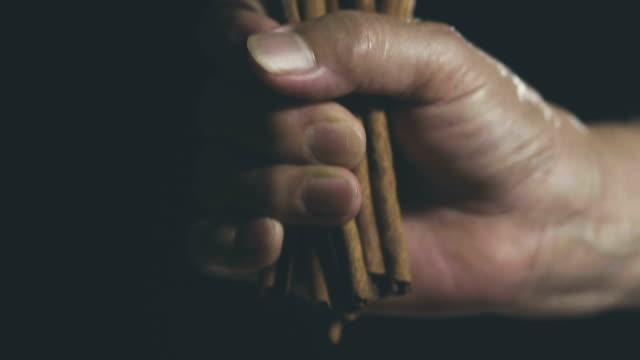 vídeos de stock e filmes b-roll de super slow motion : a cinnamon stick falls on a black - perfumado